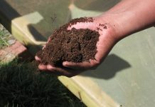 Foto de compost: Sustainable Sanitation Alliance (SuSanA). Licencia: CC-BY SA 4.0.
