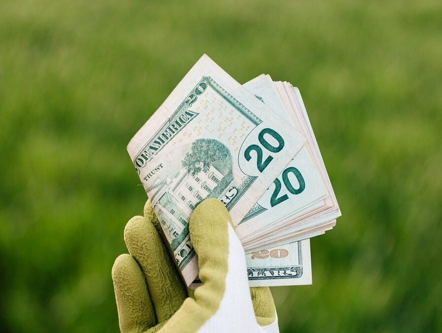 Canje de deuda por naturaleza