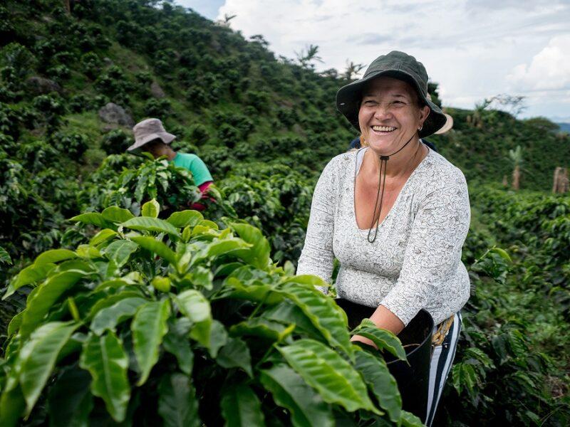 Igualdad de género, pieza clave de la agenda ambiental