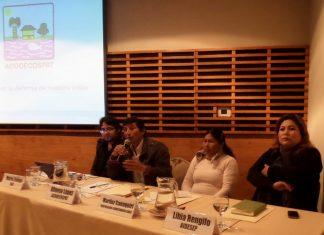 Amazonia peruana: consulta por hidrocarburos