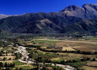 Ley de Bosques: Cuestionan a Salta en el COFEMA