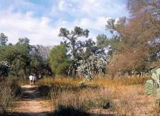 El Impenetrable Chaco Parque Nacional 2014
