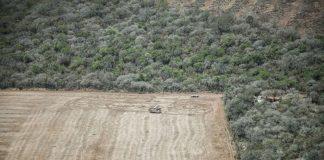 Siguen los desmontes a pesar de la Ley de Bosques
