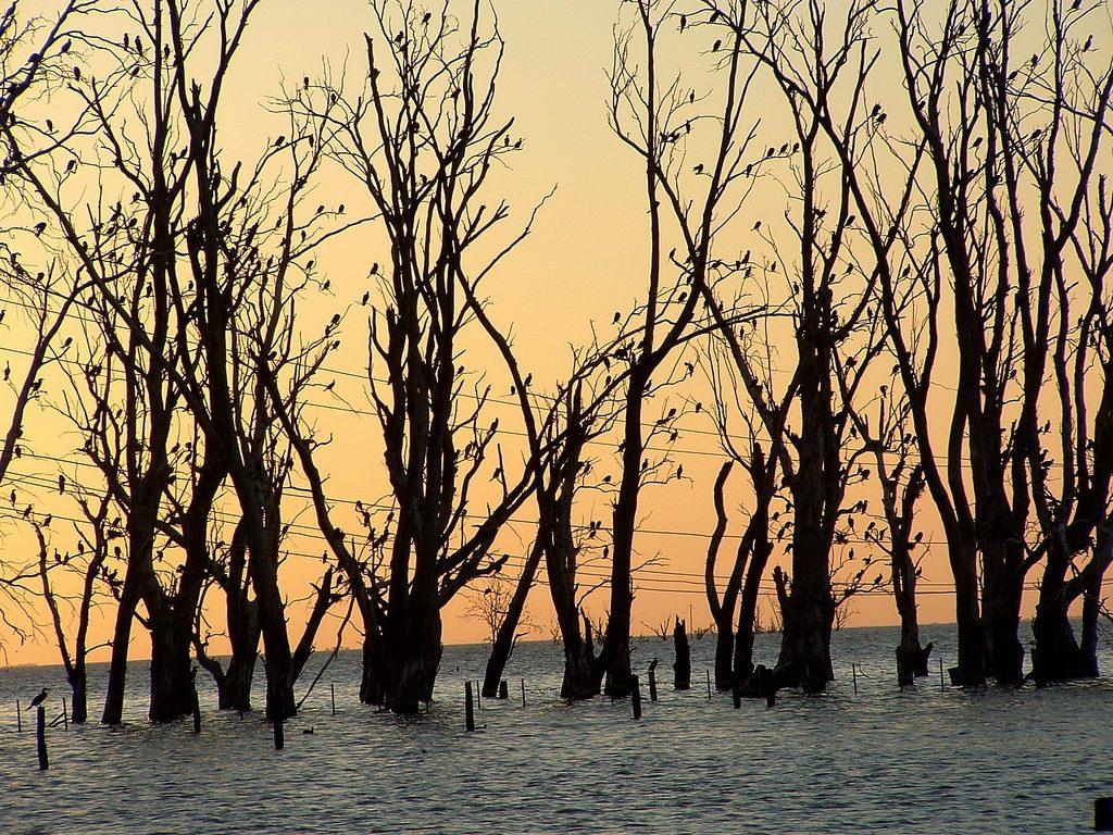 Las inundaciones serán una de las consecuencias del cambio climático y el turismo se verá afectado. Foto: Luciano Campagnolo. Licencia: CC BY 2.0.
