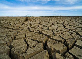 Webinario La Ciencia del Cambio Climático.