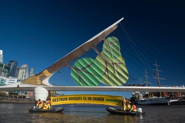 Greenpeace convirtió un puente en un bosque desmontado
