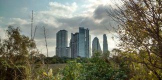 Reserva Ecológica Costanera. Buenos Aires. Foto: Damián Profeta. Licencia Creative Commons BY-SA 2.0