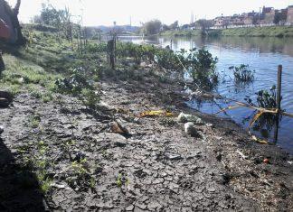 Los metales que se encontraron en el Riachuelo fueron cobre, cromo y plomo. Foto: Gabriel Basílico.
