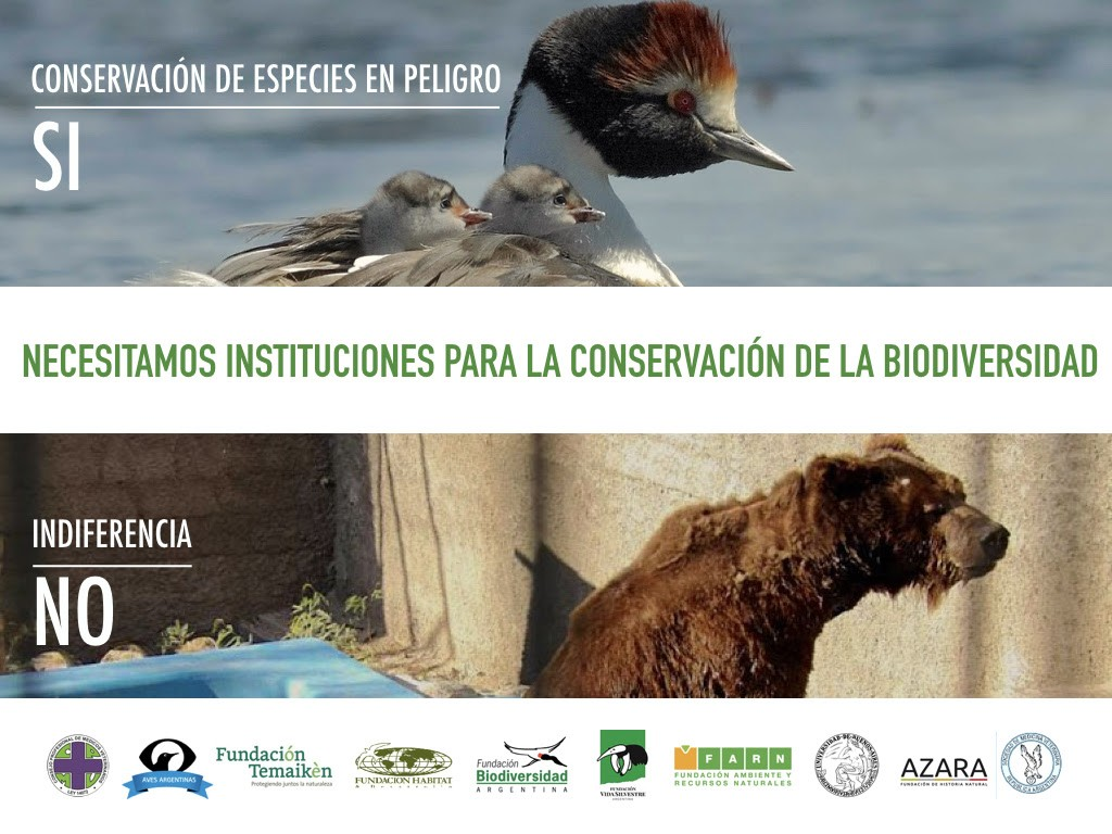 """""""Necesitamos Instituciones para Conservar la Biodiversidad"""", advirtió un grupo de ONG."""