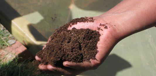 Foto de compost: Sustainable Sanitation Alliance (SuSanA). Licencia: CC-BY SA 4.0.
