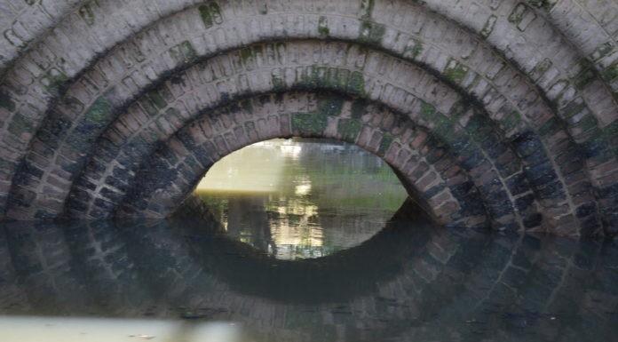 Imágenes de un viaje por las aguas del Riachuelo.