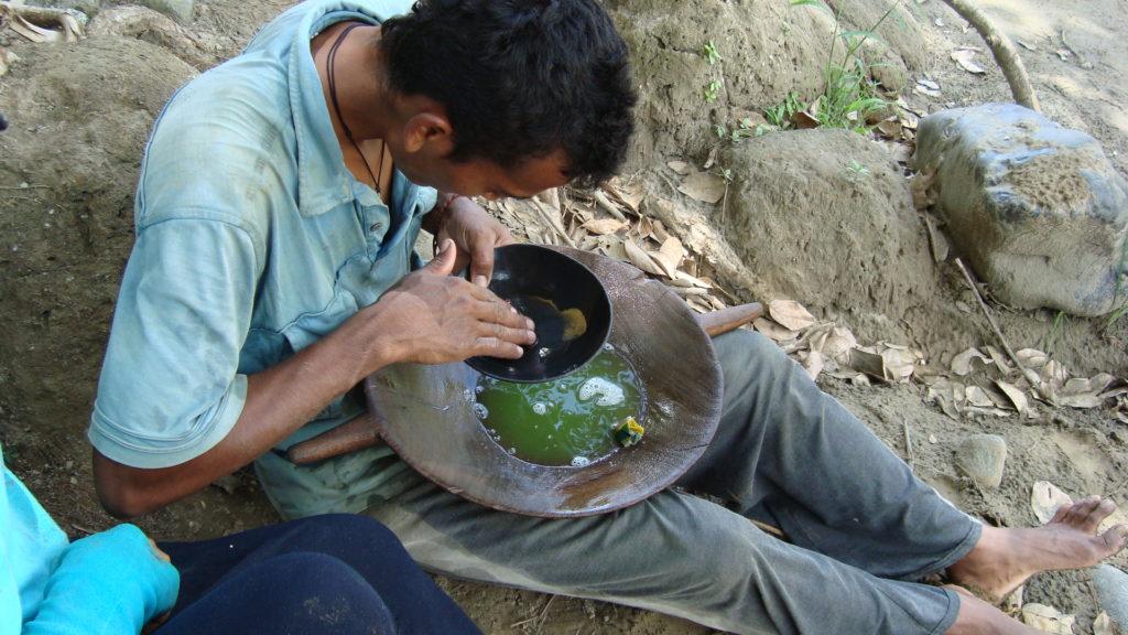 Barequero separa el oro usando plantas. Foto: Neyla Castillo.