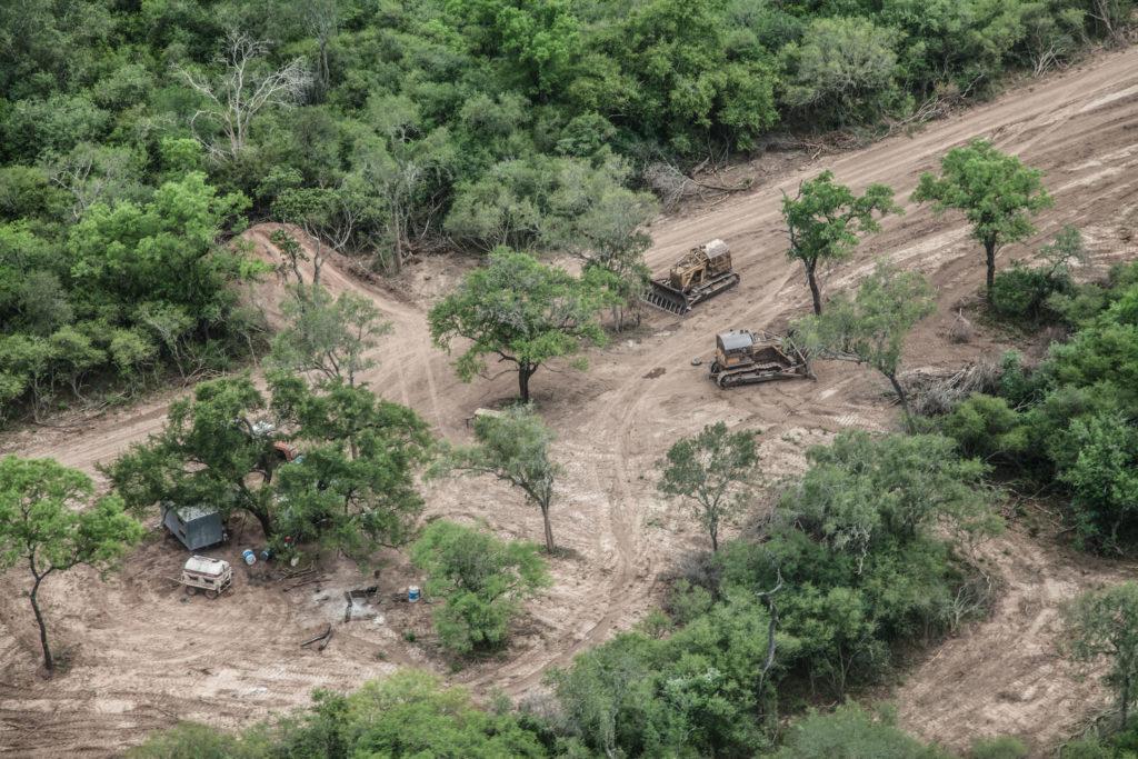 Desmontes de bosques nativos en Cuchuy, Salta. Foto: Greenpeace.