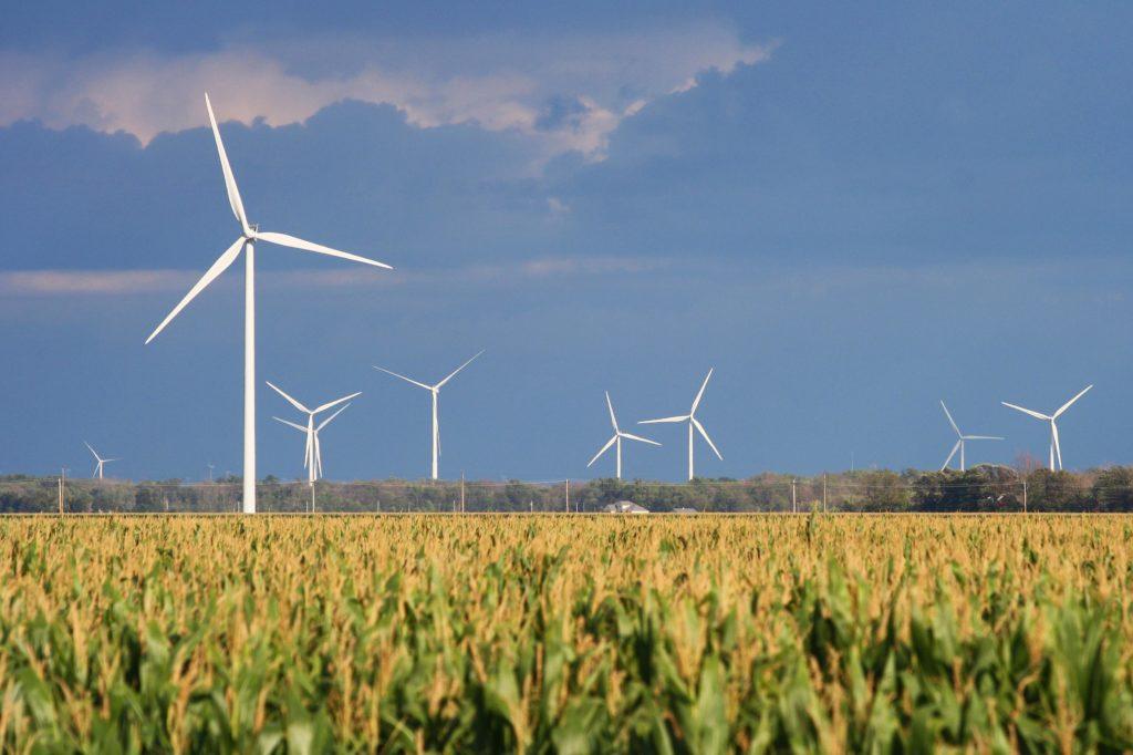 Energías renovables: el informe de IRENA destaca que la energía eólica está en torno a los 4 centavos de dólar por kWh. Foto: clconroy.