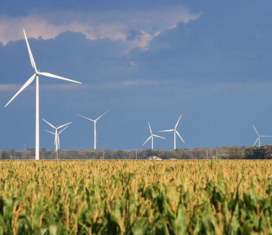 El informe de IRENA destaca que la energía eólica está en torno a los 4 centavos de dólar por kWh. Foto: clconroy.