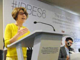 La 6ta. sesión de IPBES aprobó cuatro evaluaciones regionales sobre biodiversidad y servicios de los ecosistemas en América, Asia y el Pacífico, África y también Europa y Asia Central.