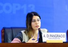 Ana di Pangrasio es directora ejecutiva adjunta de la Fundación Ambiente y Recursos Naturales (FARN).