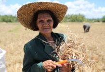 Mujeres y cambio climático: impactos y consecuencias