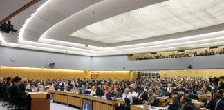 Organización Marítima Internacional (IMO)