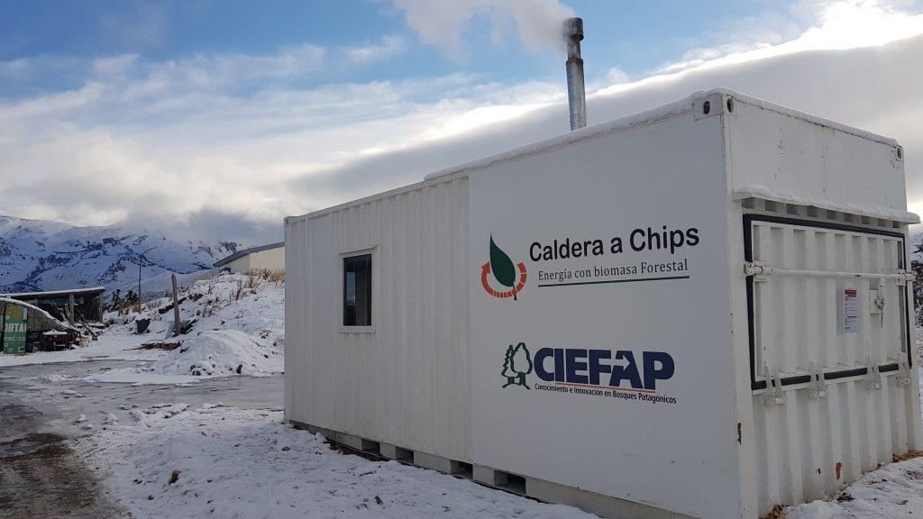 Foto: Gentileza írea de Extensión Forestal del CIEFAP (Centro de Investigación y Extensión Forestal Andino Patagónico).