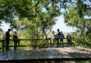 La Reserva Natural Otamendi se convirtió en el Parque Nacional Ciervo de los Pantanos.