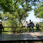 En imágenes: visita al nuevo Parque Nacional Ciervo de los Pantanos
