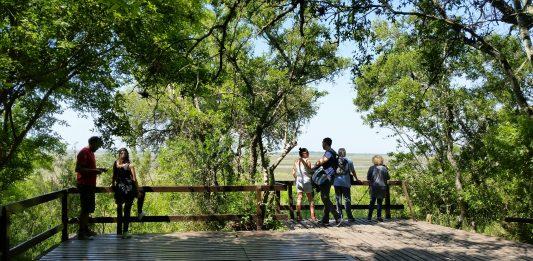 Parque Nacional Ciervo de los Pantanos (ex Reserva Otamendi). Foto: Damián Profeta. Licencia CC BY-NC-2.0
