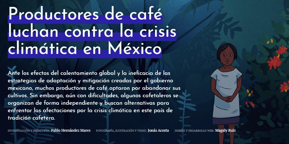 Productores de café luchan contra la crisis climática en México