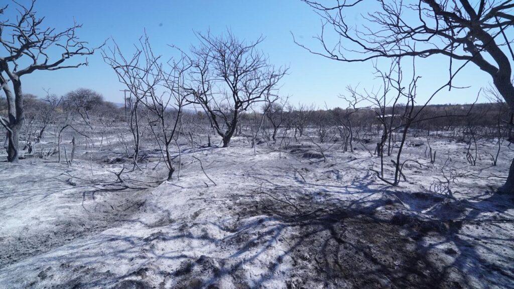 Foto de incendios en Córdoba 2020