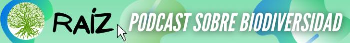 Conoce nuestro nuevo podcast